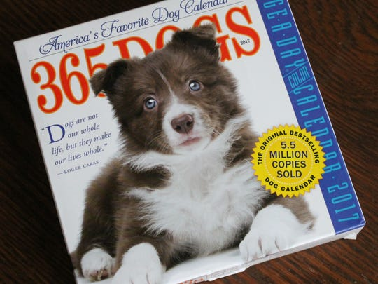 The calendar front of 365-Dogs-A-Day calendar, which