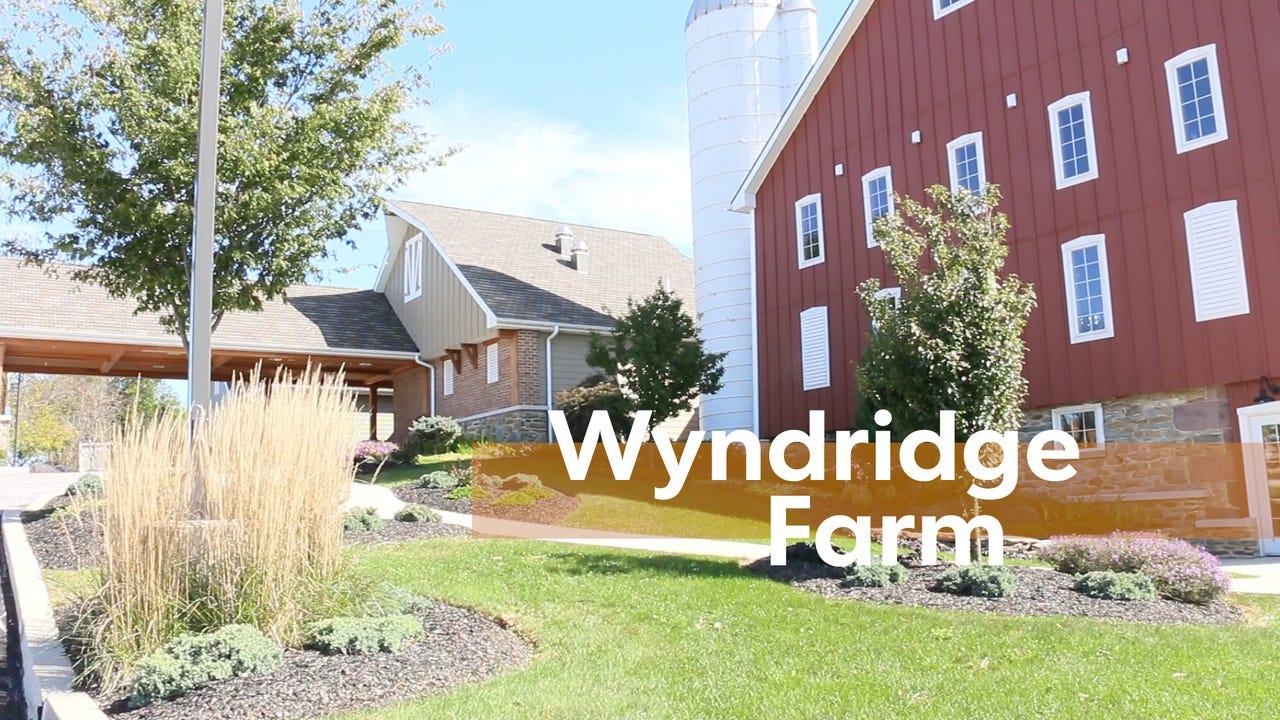 Watch: Wyndridge Farm
