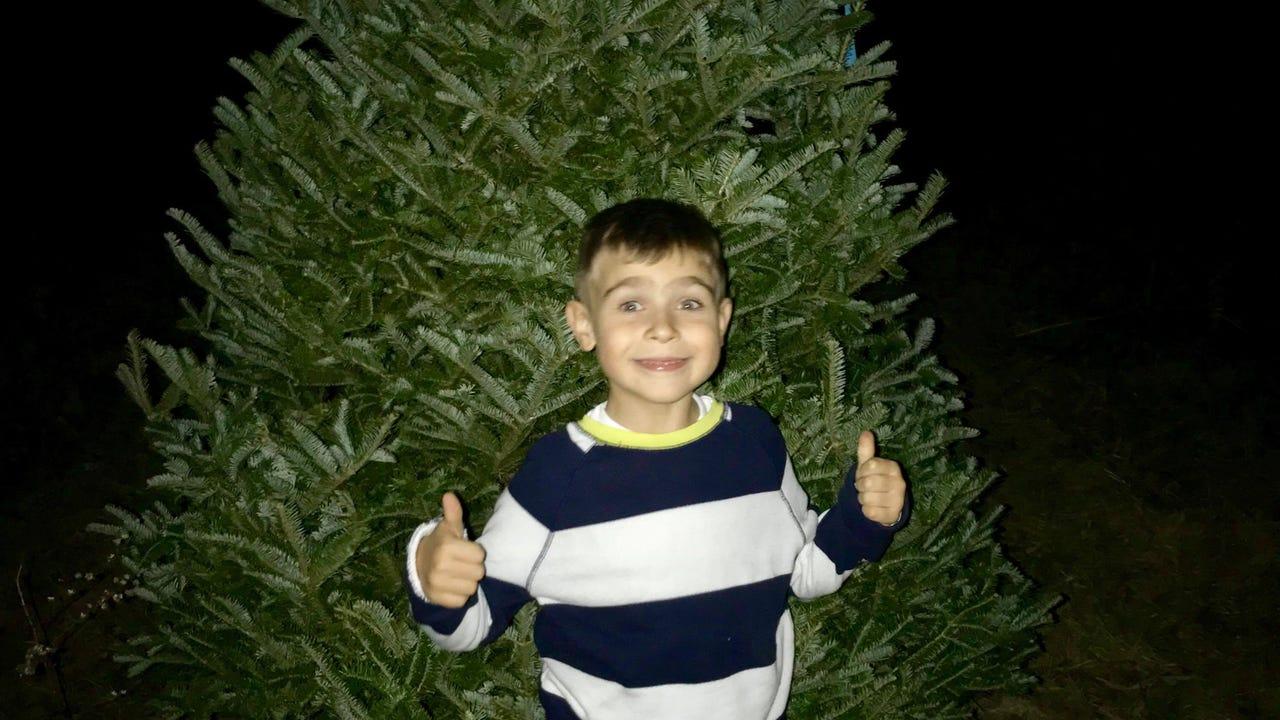 Kindhearted tree farmer saves little boy's Christmas