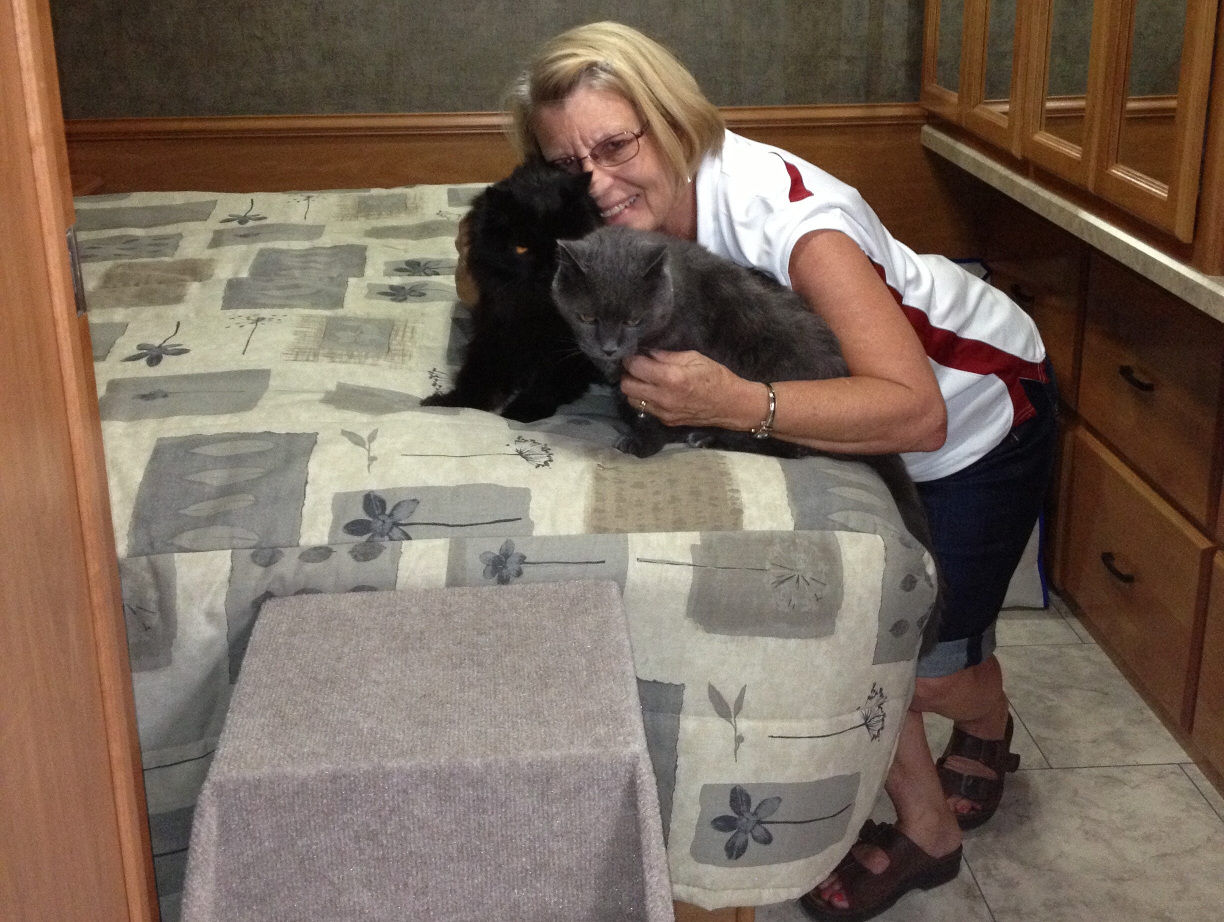 Carolyn Mitchell doesn't have to choose between traveling and spending time with the couple's cats.