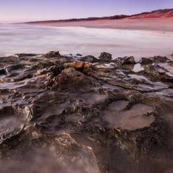World's largest dinosaur footprint found in 'Australia's Jurassic Park'