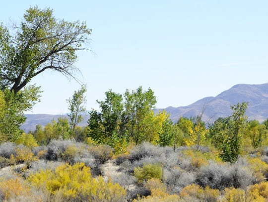 Fall colors abound at Lahontan Reservoir.