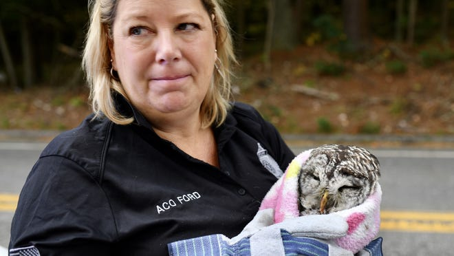 Animal control officer Jennifer Ford comforts the injured owl.