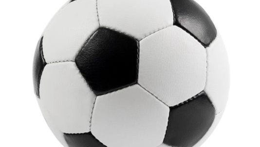 The Tennessee Sports Writers Association recently released its all-state soccer teams.