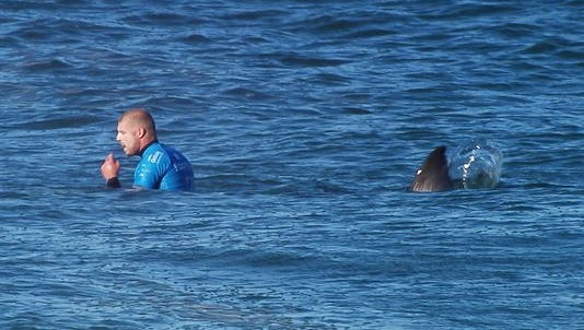 Australian surfer Mick Fanning shortly before being attacked by a shark during the Final of the JBay surf Open on Sunday July 19, 2015, in Jeffreys Bay, South Africa.