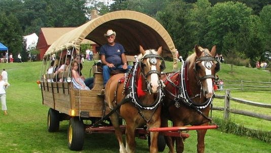 Belgian draft horses will power wagon rides at the 1920s Country Fair and Harvest Festival