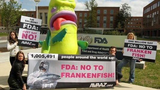 "A giant ""Frankenfish"" sculpture installed by Avaaz outside of the FDA headquarters on April 22, 2013, in Silver Spring, Md. One million people signed an Avaaz petition urging the FDA to reject approval of the world's first genetically modified salmon for human consumption."