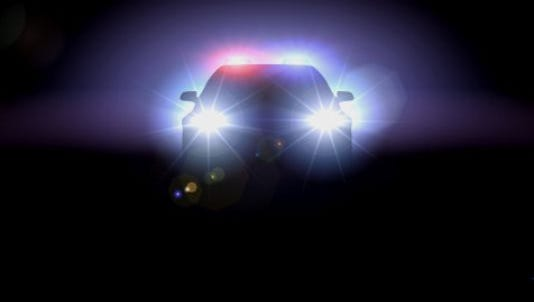 Police are looking for four people who were pulled over in a stolen vehicle early this morning in south Lansing and fled.
