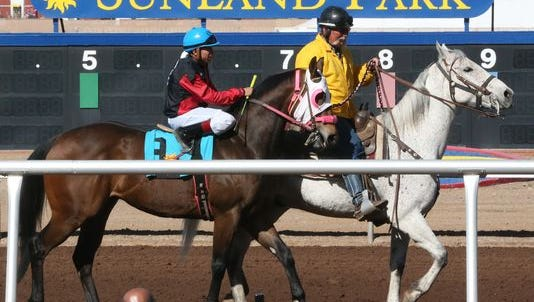 Horses and their jockeys warm up for Race 4 on Feb. 26 at Sunland Park Racetrack & Casino.