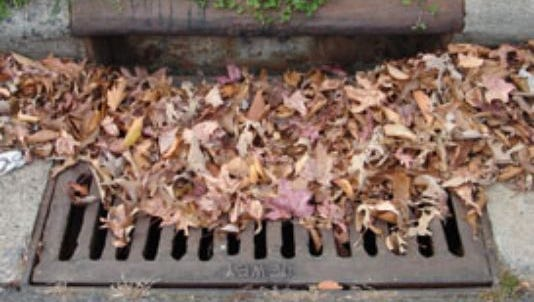 A drain clogged with leaves and other debris can restrict drainage. The city of Alexandria urges residents to remove such debris to help ease flooding if it is safe to do so.