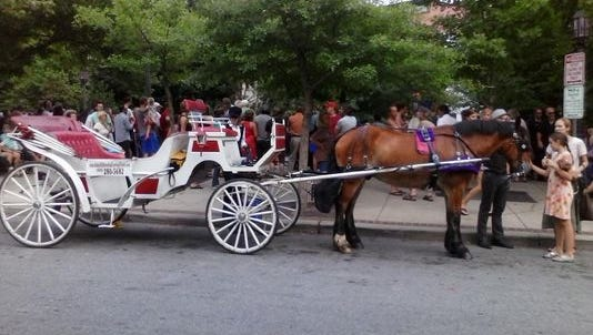 The City Council voted 6-0 to phase out horse-drawn carriages on Asheville's streets.