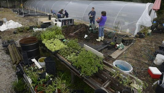 Jeff's Corner Garden started in October in a small portion of a larger garden downtown. It quickly gained a following and acquired a second, larger location on Barrancas Avenue in February.