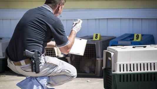 Animal control units were on scene of a Muncie man's mobile home on the south side Monday afternoon after reports that he had at least 50 cats. So far 35 cats were removed from the home with conditions inside the home making it difficult to find the others.