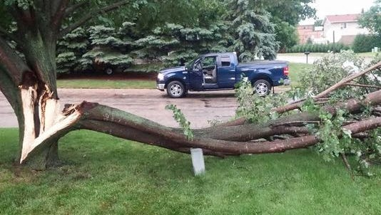 Storms caused tree damage near Cold Spring and Kimball on Tuesday, July 5, 2016.