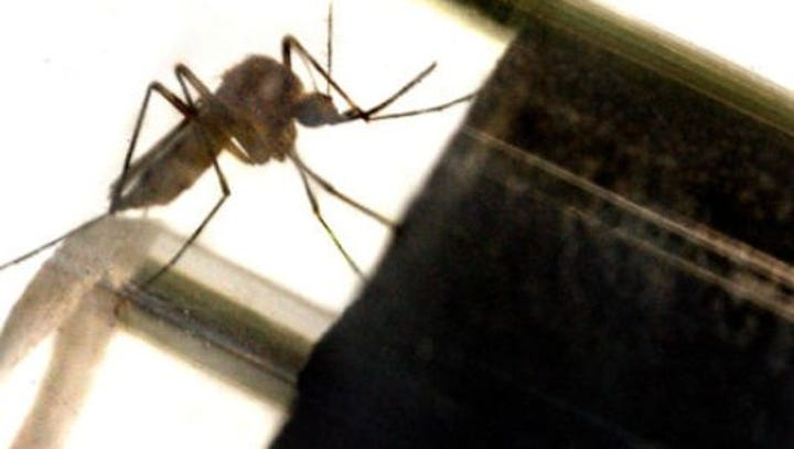 Battling mosquitoes: York County reports first human West Nile virus case of 2018