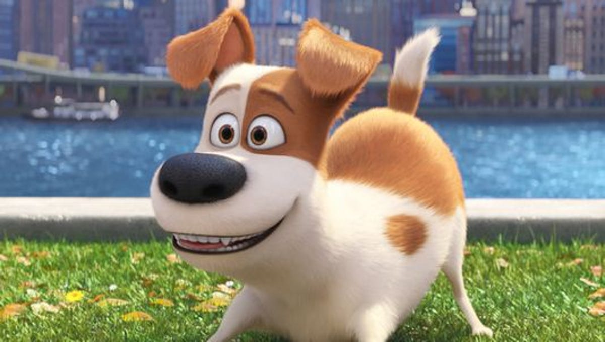 The Secret Life Of Pets It S Just Toy Story With Pets
