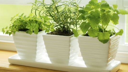 Indoor gardening is an easy way to ensure fresh herbs year round.