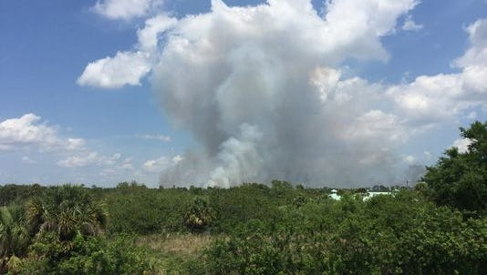 Jonathan Dickinson State Park is set to stage a prescribed burn Wednesday, July 12, 2017. This photo of a prescribed burn in Fellsmere was taken in April 2016.