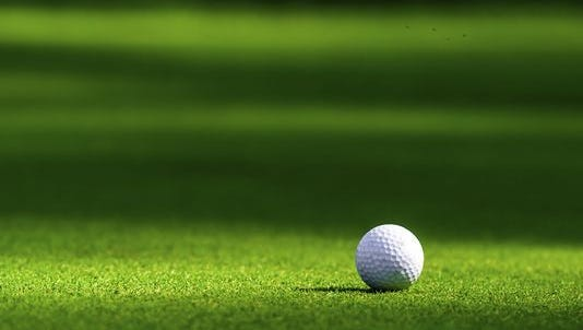Take a look at the top boys golf performers in the Lansing area.