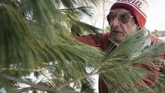 John Windsor inspects a tree at Windsor's Christmas Trees, Northern Colorado's last remaining Christmas tree farm, in this December 2016 file photo.