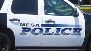 Mesa police vehicle.