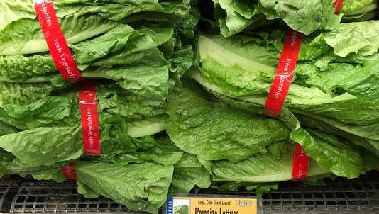 Some romaine lettuce is OK to eat, depending where it was grown, according to the U.S. Centers for Disease Control.