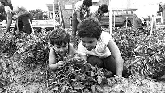 Camden residents tend a garden at 21st and Harrison streets in June 1979.