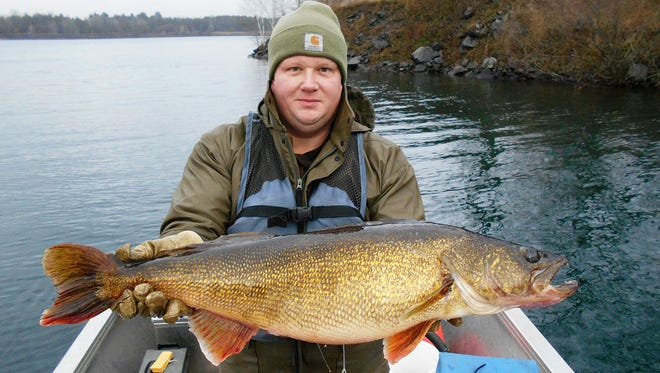 Brad Betthauser, a fisheries technician with the Wisconsin Department of Natural Resources, holds a 17 1/2 pound walleye caught on Lake Wazee in Jackson County, Wisconsin. The fish was 32.3 inches long. It was caught during a DNR fisheries survey of the lake. After it was measured and weighed, the fish was released back into the lake.