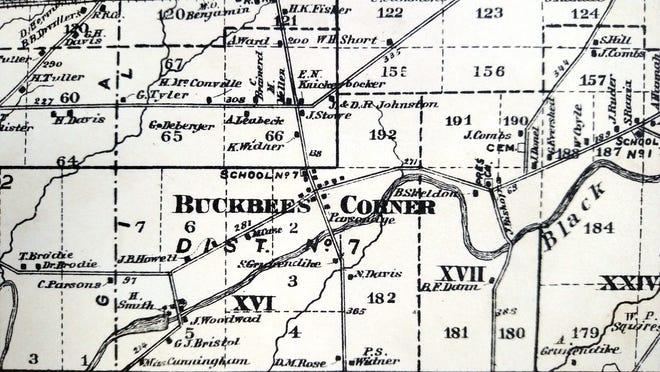 Buckbees 2