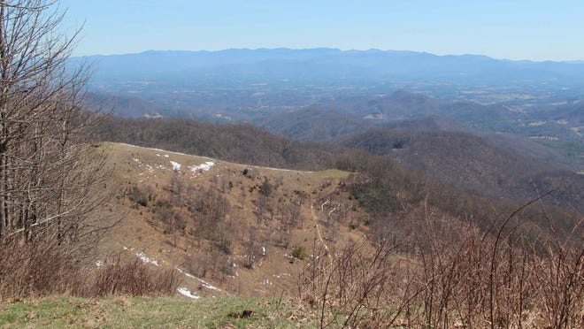 The Asheville-based Southern Appalachian Highlands Conservancy has purchased 241 acres on Little Sandy Mush bald in Madison County for permanent conservation.