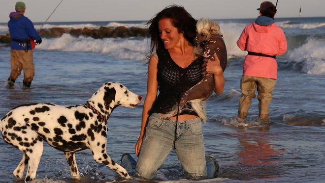 Lisa Hartman has made quite a name for herself in the world of dogs, and now she's happy to be home in Jupiter, on land or surf.