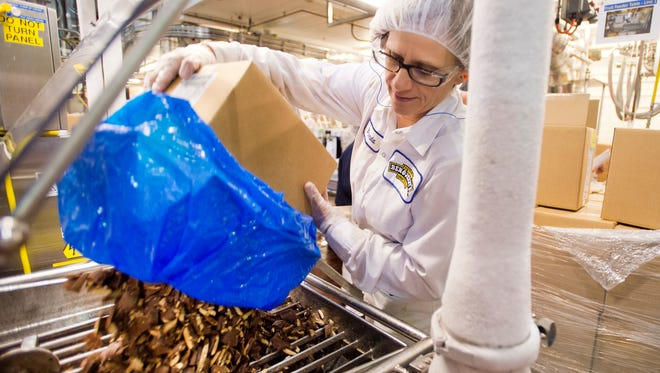 Brenda Noyes loads toffee bars into a chunk feeder that mixes the candy into coffee ice cream on Line 1 at the Ben & Jerry's factory in St. Albans. The iconic Vermont brand said farewell to Health Bar toffee in favor of a new toffee source that is non-GMO.