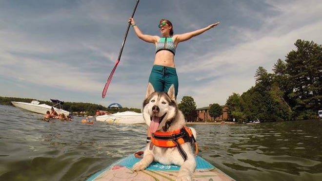 The Seacoast Paddle for the Pups fundraiser will be a virtual event this year.  From Friday, Aug. 14 through Sunday, Aug. 23, paddlers will head to their favorite body of water to save lives with every stroke, sharing on social media with hashtag #SupPupNH.