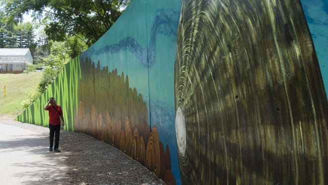 The Center for Biological Diversity hosted a public celebration on Sunday for a 230-foot-long mural along a retaining wall on the Third Creek Greenway near Tyson Park. (SAUL YOUNG/NEWS SENTINEL)