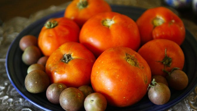 Tomatoes are a favorite crop for many local gardeners. The North Side Boys & Girls Club will be selling produce at the Family Dollar on Junis Street on July 25.
