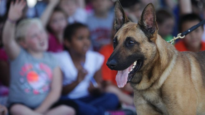 Anderson K-9 Aero visits Anderson Heights Elementary School last year in this file photo.