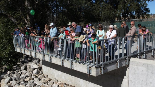Record Searchlight file photo People participate in the Return of the Salmon Festival at the Coleman National Fish Hatchery in Anderson in 2014. This year's salmon festival is Saturday.
