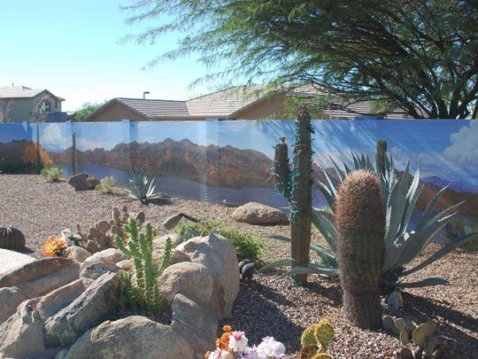 Paula and Jim Damico's Saguaro Lake mural is one of their favorite things about their backyard.