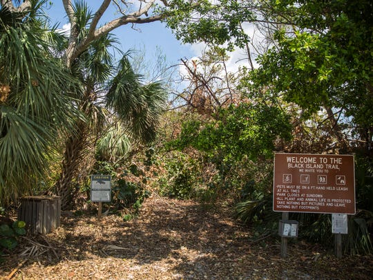 Hurricane Irma left the Black Island Trail at Lovers Key State Park inaccessible, as seen on Friday, Sept. 22, 2017.