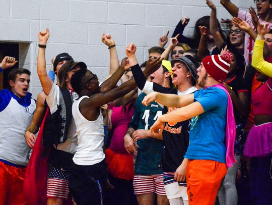 The fans get into the game during the Spring Grove-Northeastern