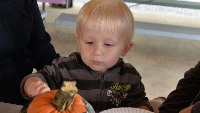 Two-year-old Frederick Gerstner, of North Lebanon Township, paints a pumpkin at Empowerment in the Park held at Ebenezer Park on Saturday, Oct. 1, 2016. This is the second year for the fall festival sponsored by Shadow Busters and Tim McShane Insurance to benefit the 2016 Allstate Foundation Purple Purse Campaign to end domestic violence. The festival is an observance as October as National Domestic Violence Awareness Month.