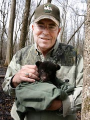 Louisiana Department of Wildlife and Fisheries Secretary Robert Barham holds a black bear cub at the Tensas River National Wildlife Refuge in Tensas Parish in this file photo. The cub and its mother were part of a relocation effort to repopulate areas with diminished numbers of the species.