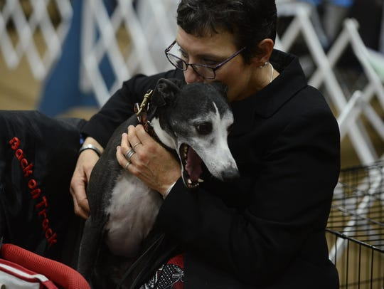 Sharron Lane watches the Whippet competition with Splash
