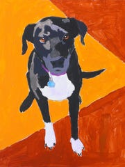 Pet portraits created by patients of Feist-Weiller