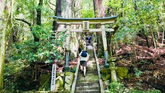 To reach the three grand shrines on foot, hikers must pass through several sub-shrines and ancient gates along the way, sometimes dotted by 800-year-old cedar trees.
