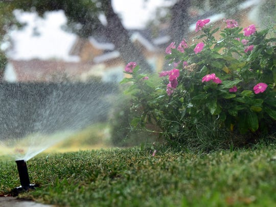 Sprinklers set on a timer waters plants and grass during the permitted morning hours in Studio City, California August 19, 2014.