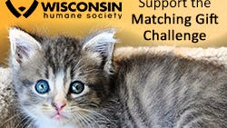 August match poster for Wisconsin Humane Society