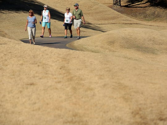 Dormant bermuda grass line most of the TPC Stadium Course on Wednesday, January 20, 2016 the day before the start of the CareerBuilder Challenge.