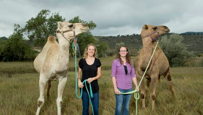 Danielle Adney, left, and Vienna Brown are Ph.D. students in CSU's College of Veterinary Medicine and Biomedical Sciences.