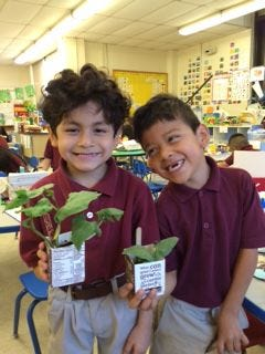 Iverson Garcia (left) and Daimar Juarez, kindergartners at Broad Street School in Bridgeton, show off their lima bean plants. The school recently received a garden grant from the New Jersey Agricultural Society.